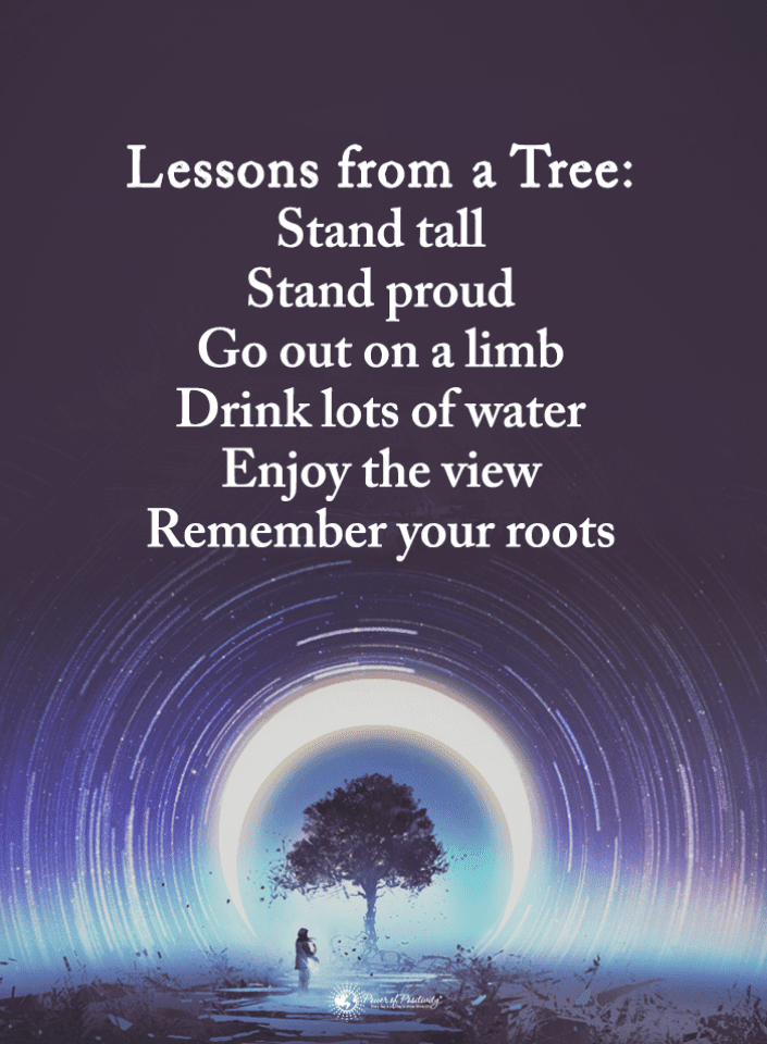 Life Lessons Quotes, Quotes,