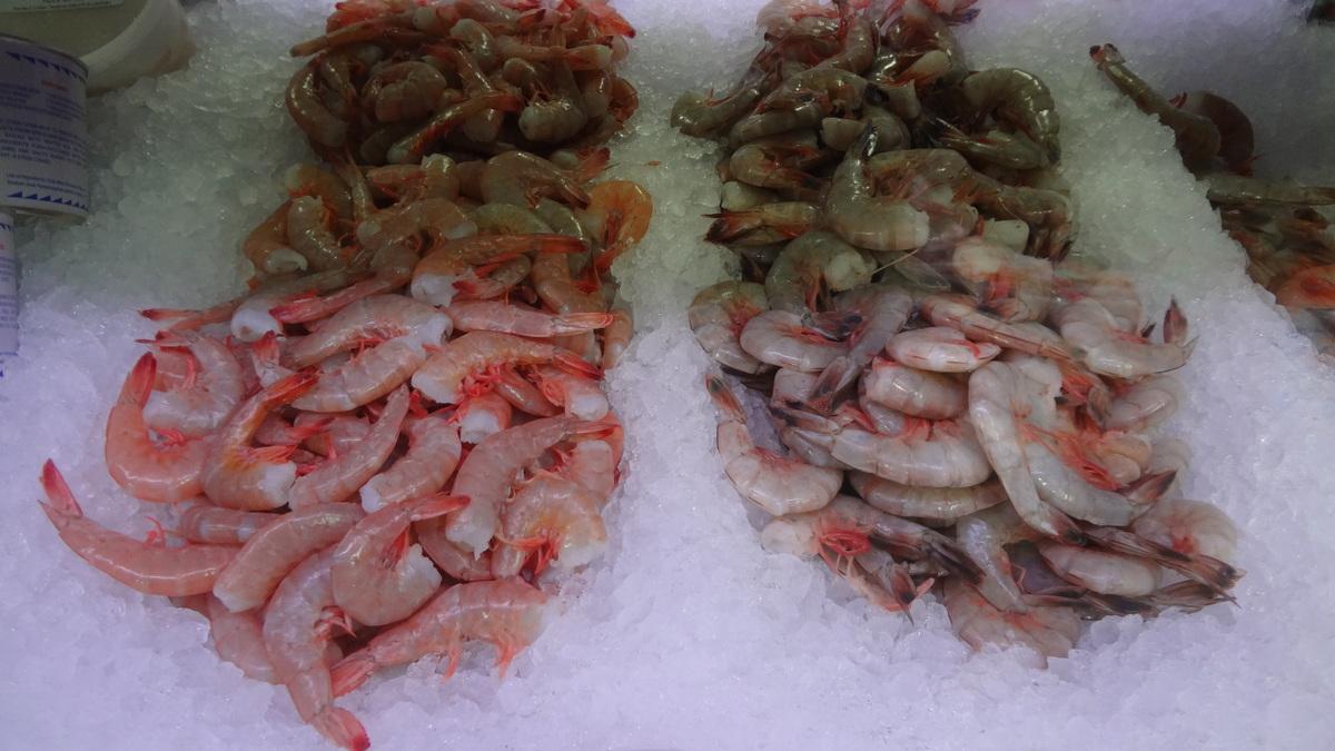 Frozen Shrimp Prawn Manufacturers Buying Guides - Frozen