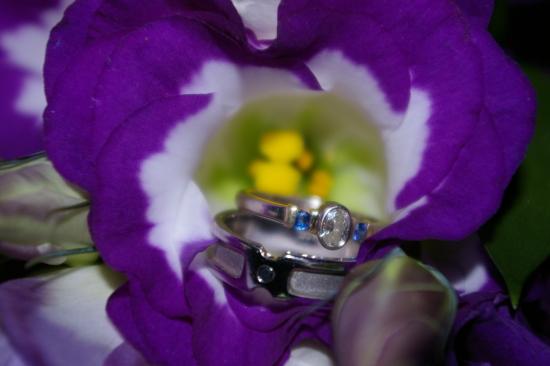 Wedding Journal: Featured Wedding