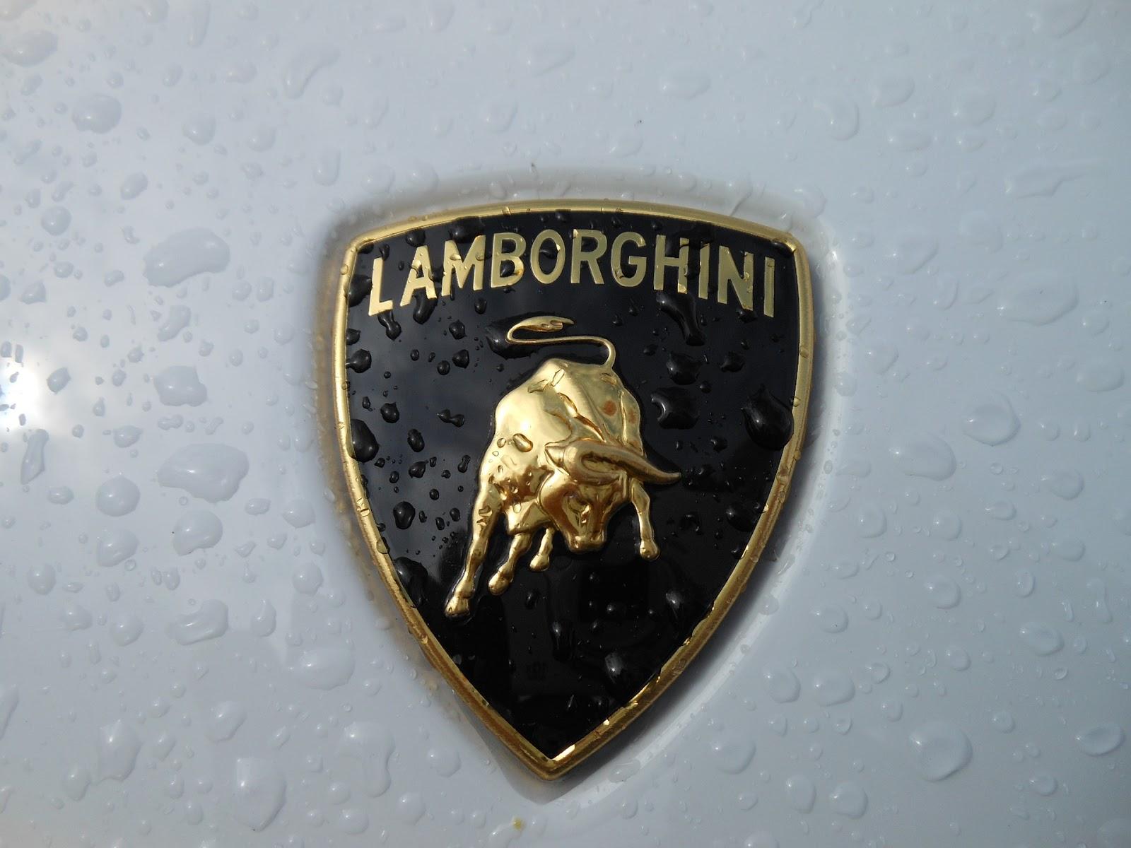 Lamborghini All Models