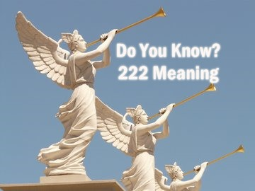 222 Meaning In English