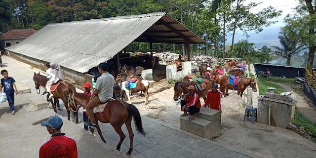 Candi Gedong Songo, Semarang Jawa Tengah - naik kuda