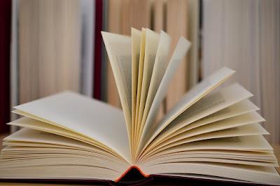Libros-discapacidad
