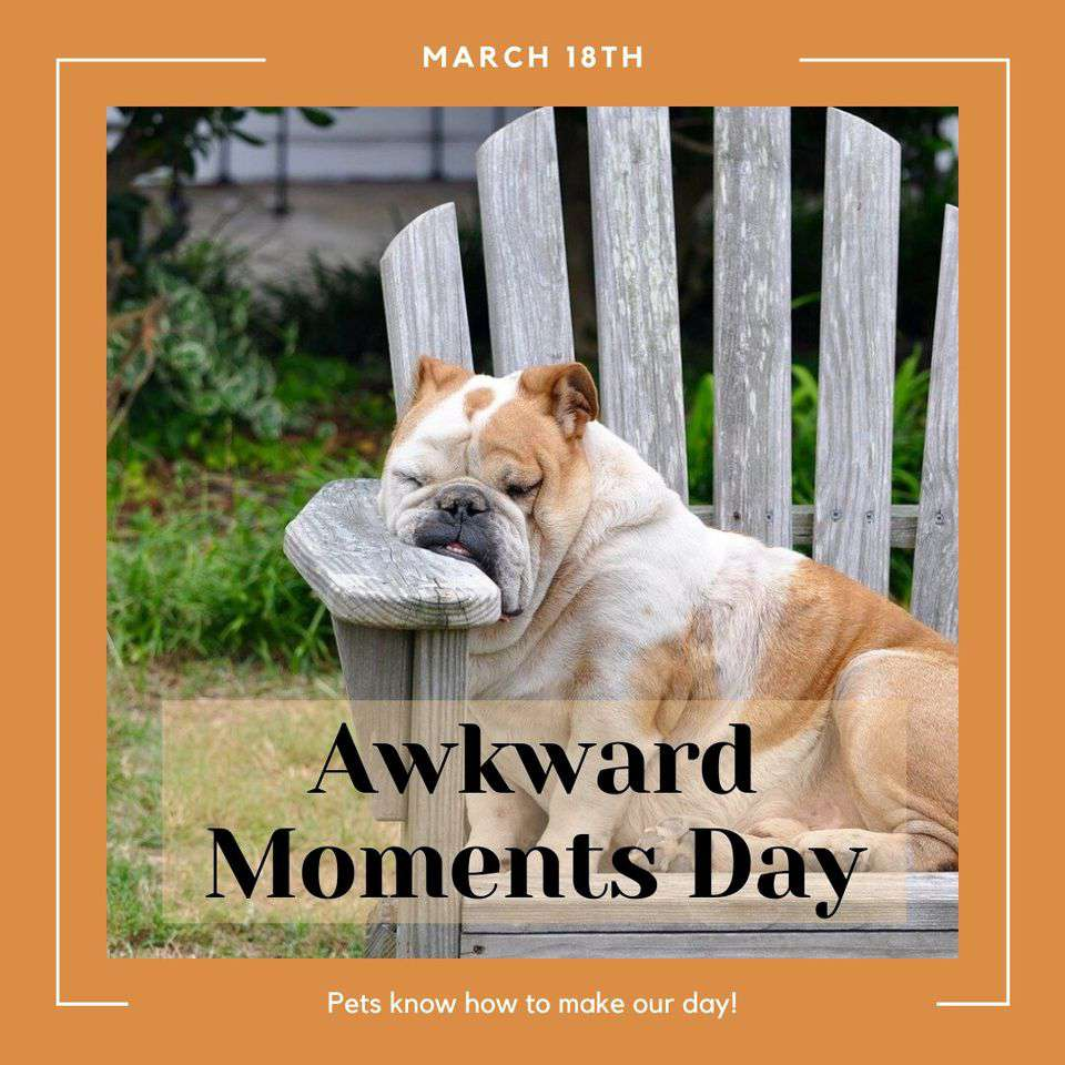 Awkward Moments Day Wishes Awesome Images, Pictures, Photos, Wallpapers