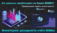 Кто реально зарабатывает на бирже BitMex? Правильный сервис мониторинга.
