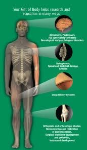 Let's talk about it...: DONATING YOUR BODY TO SCIENCE? IF ...
