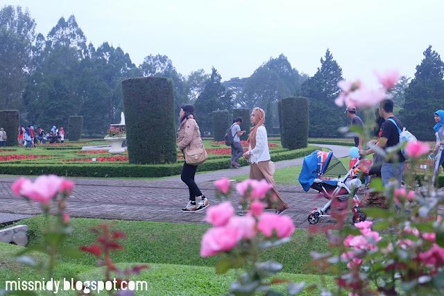 lokasi piknik keluarga