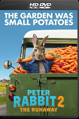 Peter Rabbit 2: The Runaway [2021] [C – DVDR] [Latino]