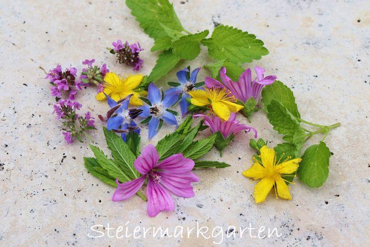 Blüten-Kräuter-Steiermarkgarten
