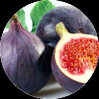 Buah Tin alami dari alam untuk Bahan Herbal TF organik