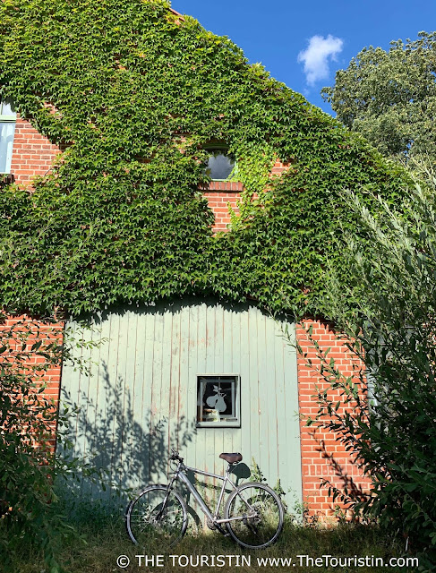 Bicycle parked in front of a overgrown red brick period property under a bright blue sky.