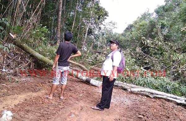 Masyarakat Desa Tongka Gontong Royong Buat Jalan Usaha Tani