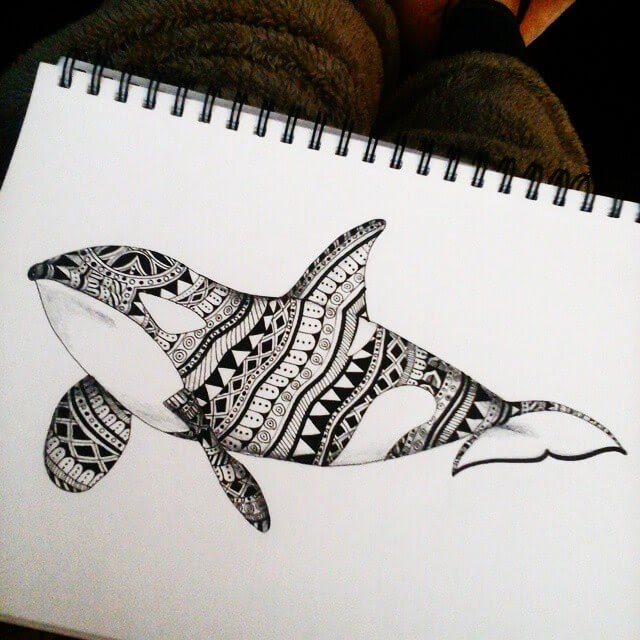 07-Orca-Killer-Whale-Savanna-Zentangle-Wild-Animal-Drawings-www-designstack-co