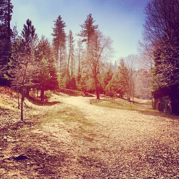 lake arrowhead, path through the trees