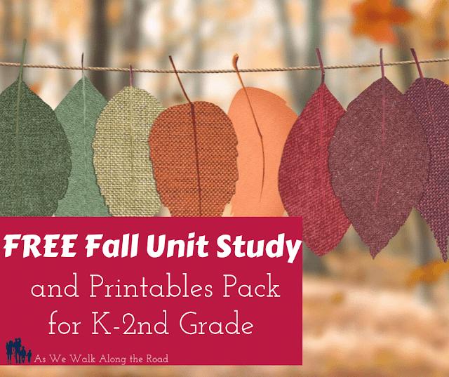 Free fall unit study