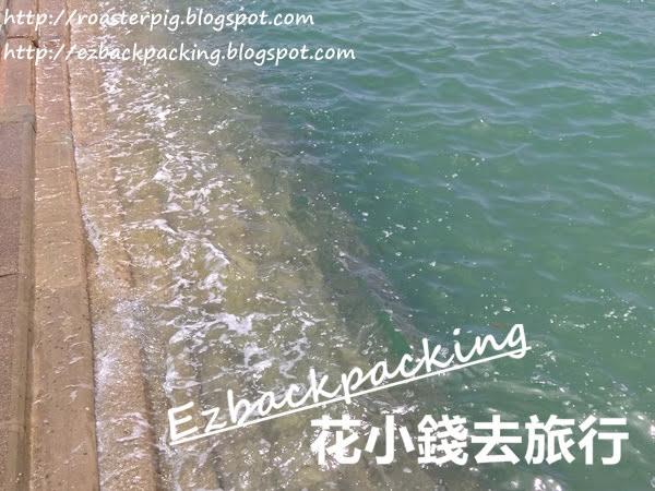 大廟碼頭釣魚