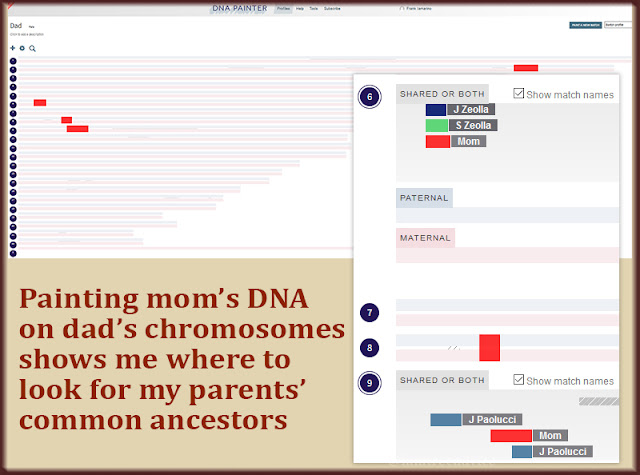 DNA Painter shows where my mom and others intersect on my dad's chromosomes.