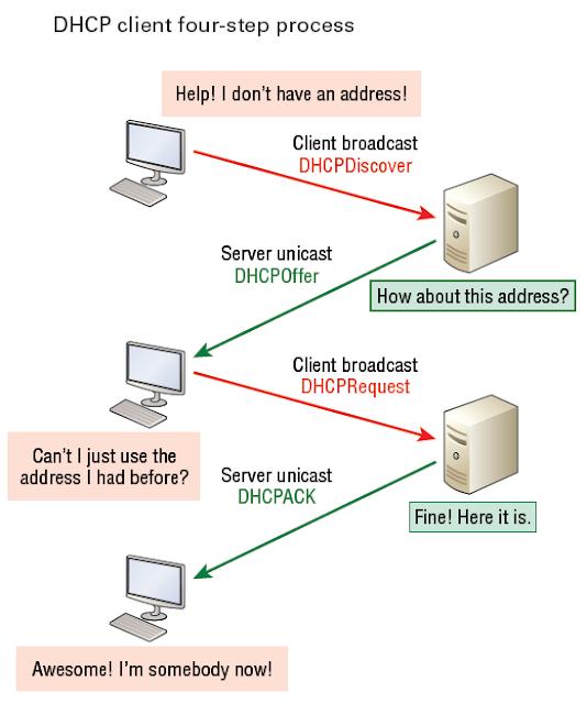 ما هو بروتوكول DHCP وكيف يعمل ؟