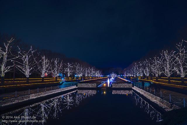 国営昭和記念公園のイルミネーション 2014