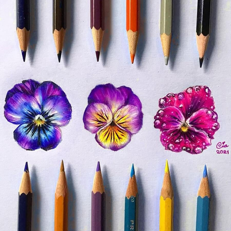 12-Three-pansy-flowers-Cia-www-designstack-co