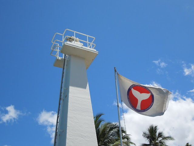 lighthouse and flag