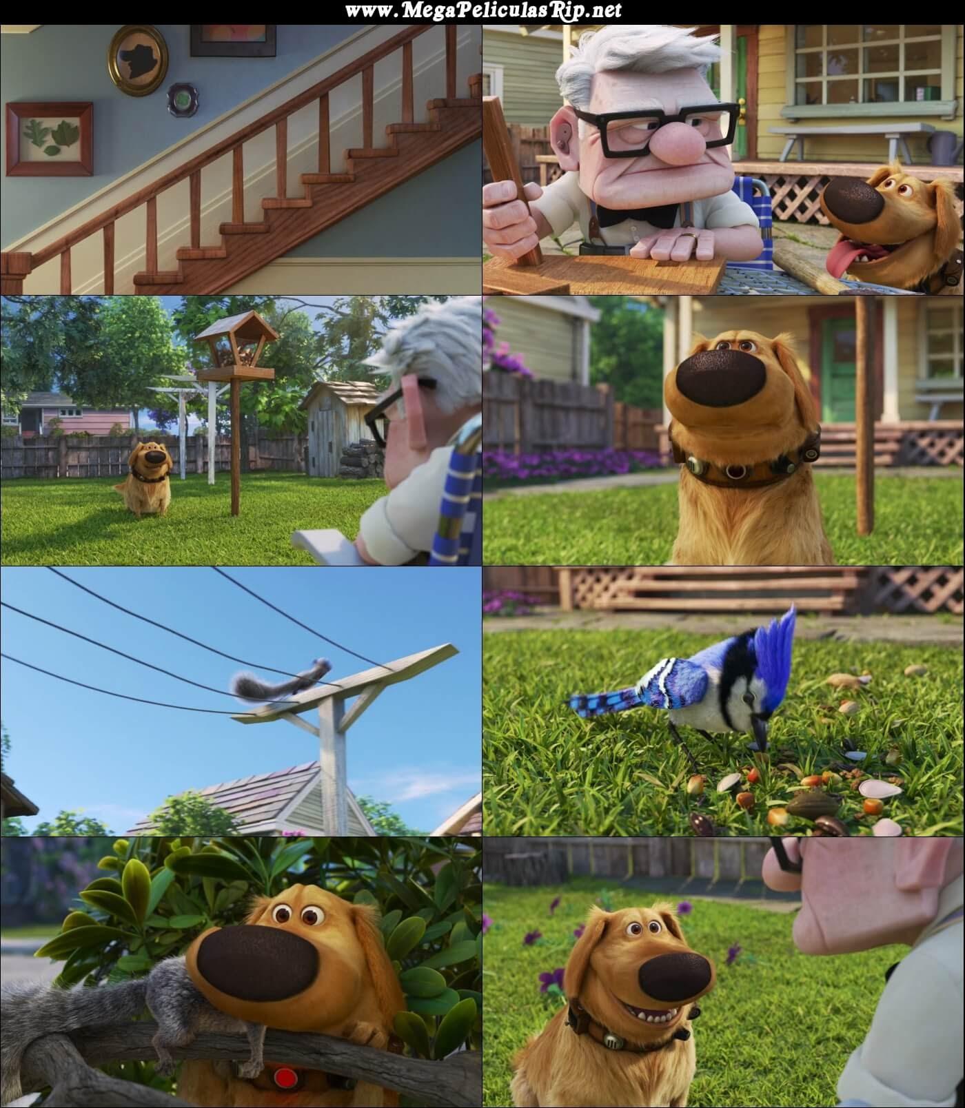 Dug Days Temporada 1 1080p Latino