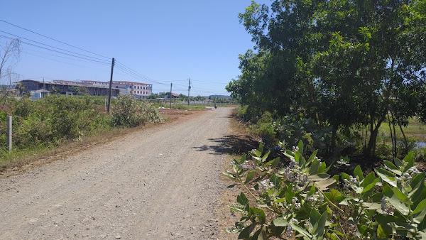 bán đất Hồ Tràm Vũng Tàu , vị trí Gần trường tiểu học Hồ Tràm