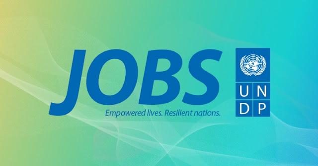 undp-jobs-logo