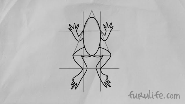 How to draw frog step 05 - 2