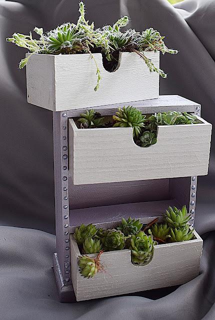 Kommode mit Sukkulenten bepflanzen