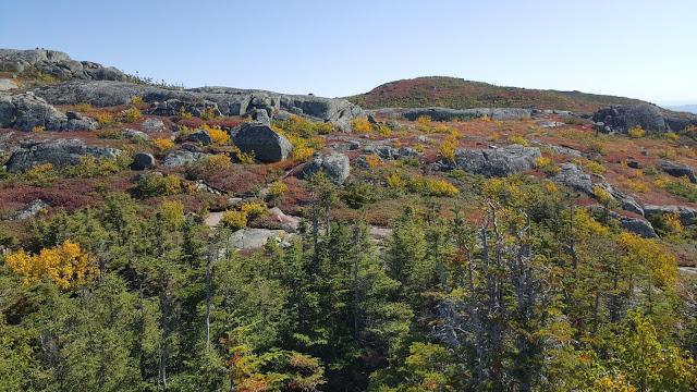Au plus haut sommet (troisième) du mont des Érables (Acropole des Draveurs)