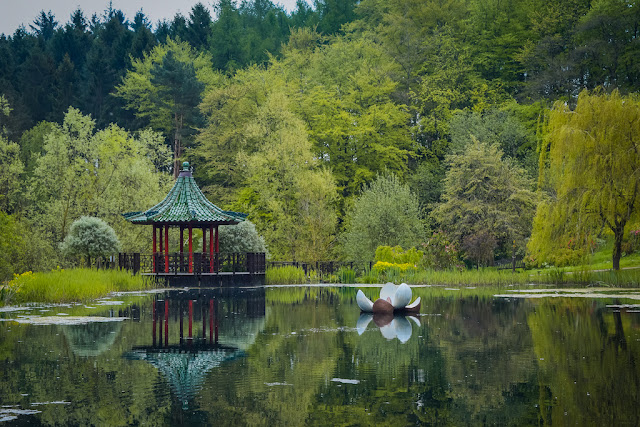Himalayan Garden and Sculpture Park lake with floating lily and band stand