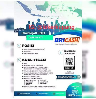 Lowongan Kerja BRICASH Sebagai Cash Processing Center, Custody, Driver