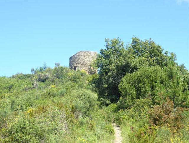 Torre Pisana sentiero Andora Albenga