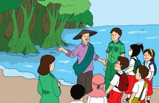 Hutan Bakau, si Sabuk Hijau Pelindung Pantai www.simplenews.me