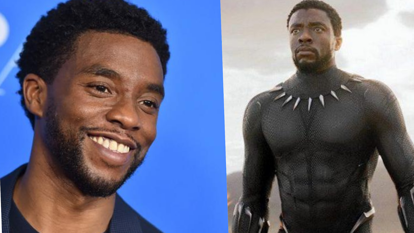 Black Panther star Chadwick Boseman dies due to cancer at 43