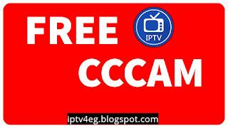 free server cccam
