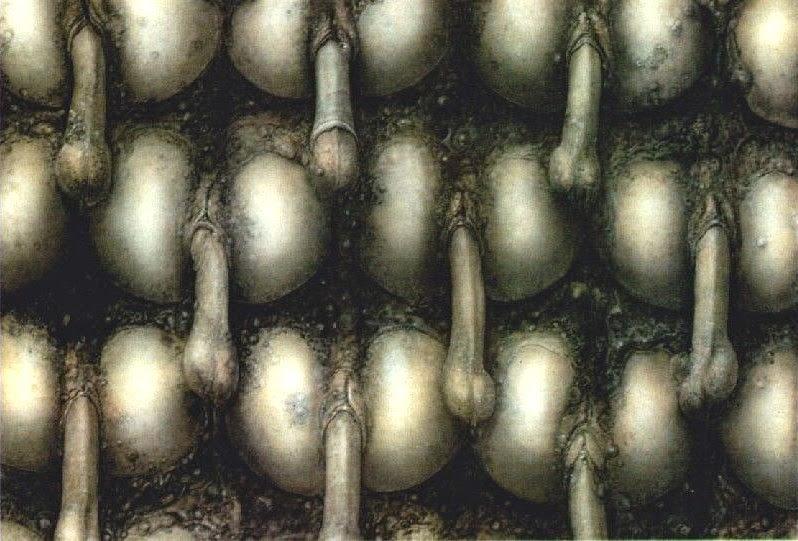 36 c saline tits