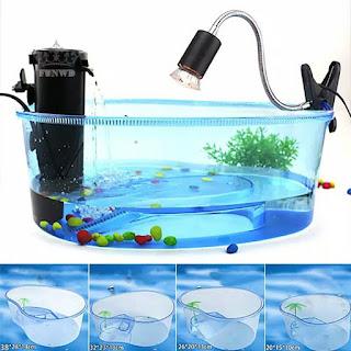 jual-aquarium-kura-kura-murah.jpg