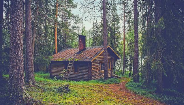 case nel bosco a roma e nel lazio, staycation
