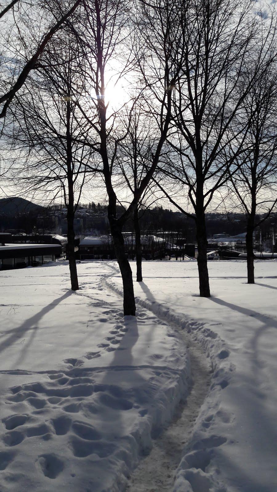 woodys hafjell facebook