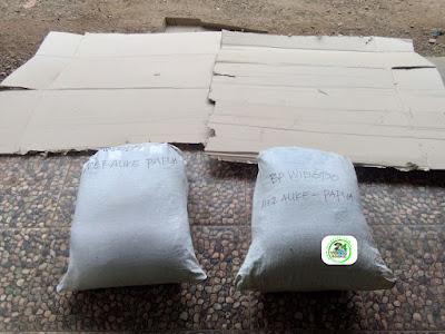 Benih pesanan WIDODO Merauke, Papua..   (Setelah Packing karung untuk packing kardus)