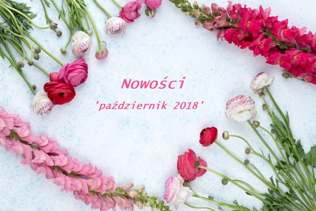 Nowości 'październik 2018' | NEW IN