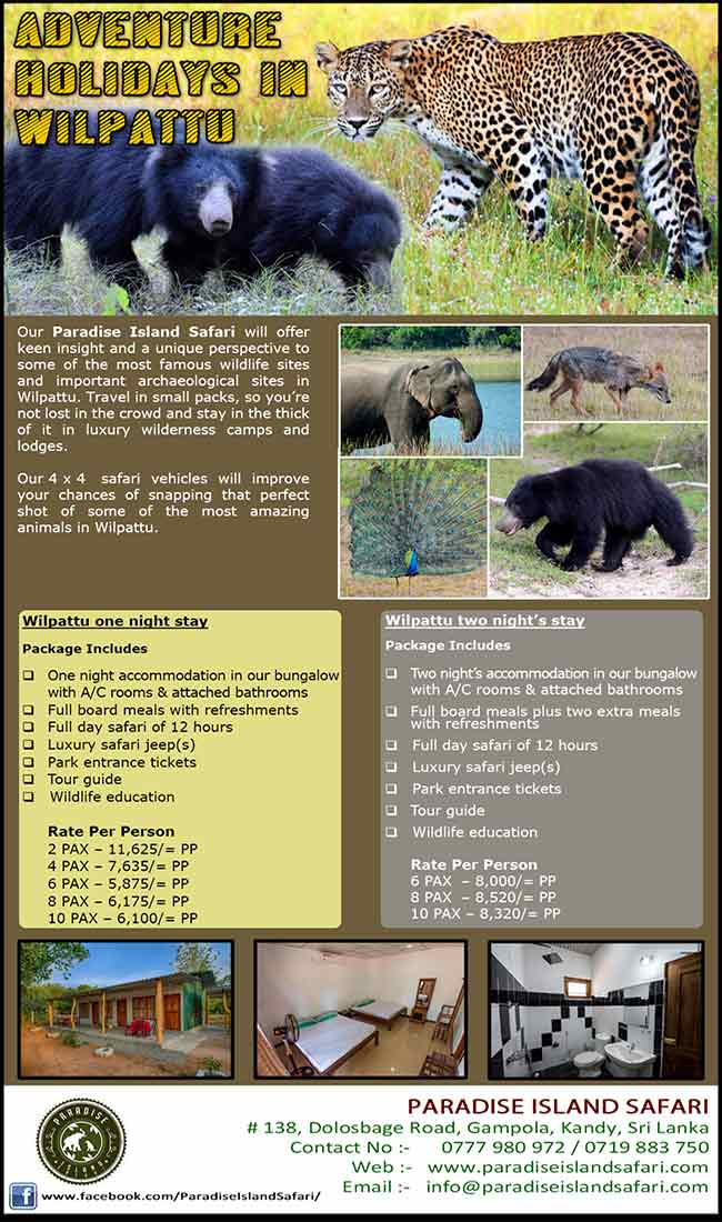 Wildlife holidays in Wilpattu | Paradise Island Safari.