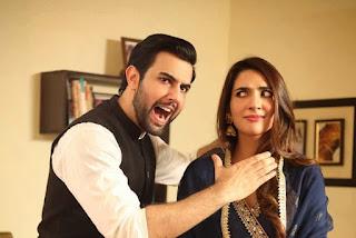 Sila E Mohabbat (HUM) Drama Wiki, Actress, Story, Episodes, Streaming
