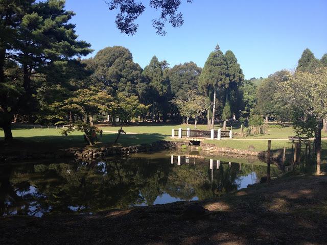 lo splendido lago del parco