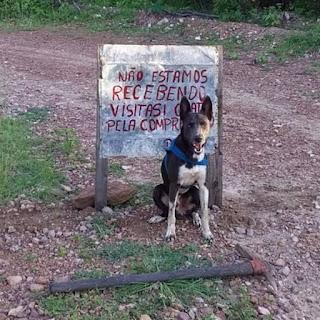 Em Caicó, agricultor coloca placa na entrada de sítio; não está recebendo visita por causa do coronavírus