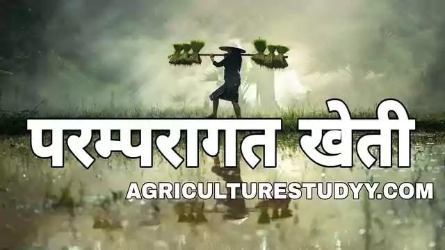 परम्परागत खेती क्या है, traditional farming in hindi, परम्परागत कृषि, परम्परागत खेती की परिभाषा, परम्परागत खेती की विशेषताएं, परम्परागत खेती का महत्व,