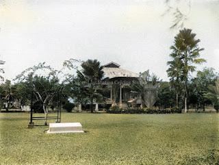 perkebunan karet di batang toru dengan nama perusahaan caoutchouc plantage maatschappij