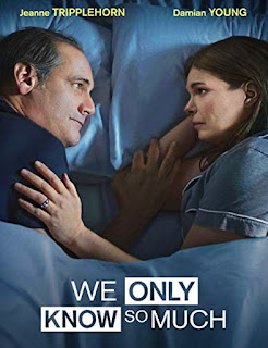 We Only Know So Much (2018) | DVDRip Latino HD GoogleDrive 1 Link